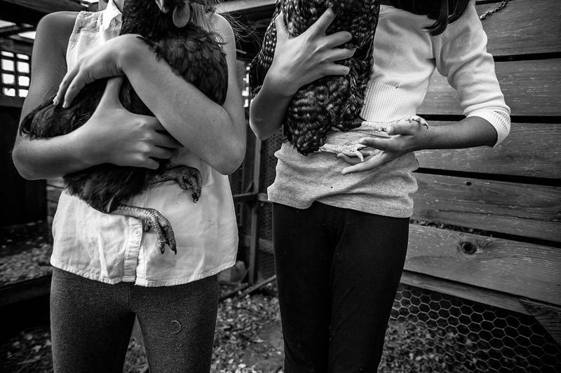 Girls hold their Chickens in a backyard hen house.