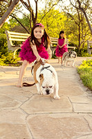 Pink Tutus and Bulldogs